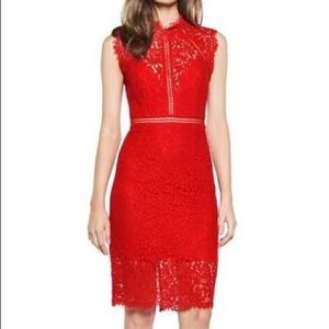 Red Lace High Neck Dress